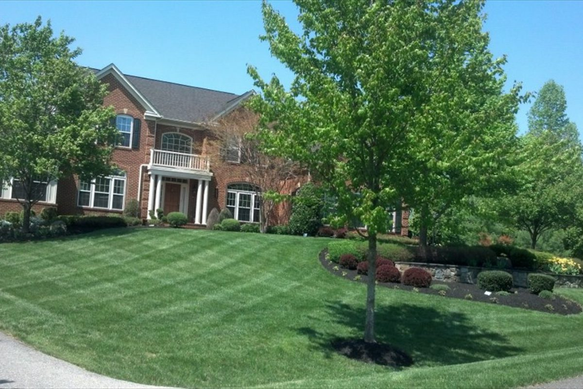 What Are The Important Elements Of Landscaping?