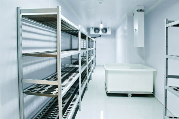 Things to Consider Before Purchasing the Costly Commercial freezers in Sydney
