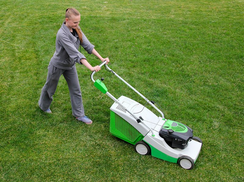 Benefits And Points To Be Consider Before Purchasing Lawn Mower