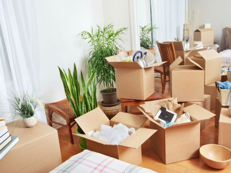 Types of Services Provided by Professional Removalists