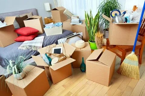 We will help you in finding quality removalists for your home Under your Budget